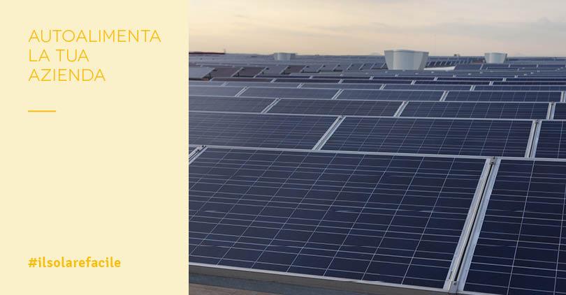 Energia elettrica per Aziende: vantaggi dell'autoconsumo fotovoltaico